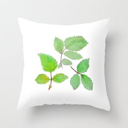 3 green rose leaves watercolor Throw Pillow