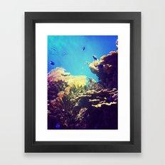 In The Big Blue World Framed Art Print