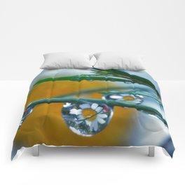 Daisy drops Comforters