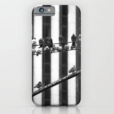Pigeon Rows iPhone 6s Slim Case