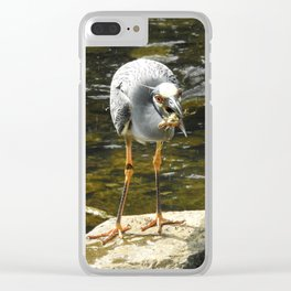 Lunch Time Clear iPhone Case