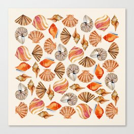 Watercolor Shell Collection Canvas Print