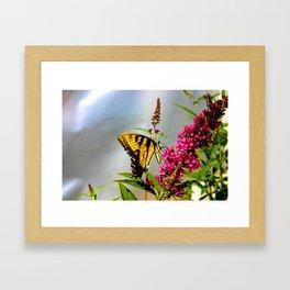 Butterfly Wonderland Framed Art Print