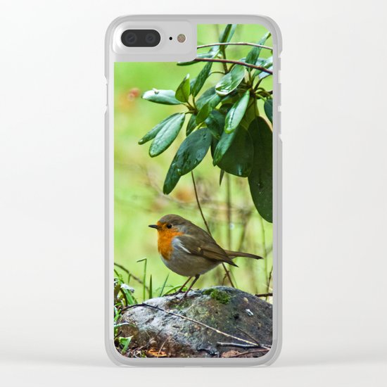 Robin in the spring Clear iPhone Case