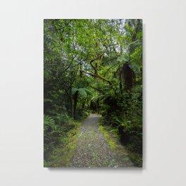 Jungle Path Metal Print