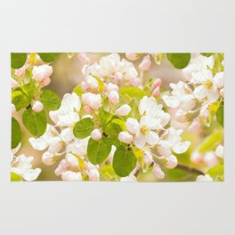 Apple tree branches with lovely flowers and buds on a pastel green background Rug