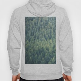 Forest Immersion Hoody
