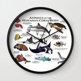Animals of the Hawaiian Coral Reefs Wall Clock