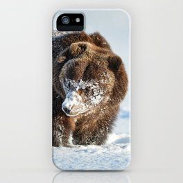 Alaskan Grizzly in Snow - 2 iPhone Case