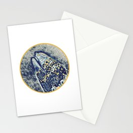 Snow Flake Moray Eel Stationery Cards
