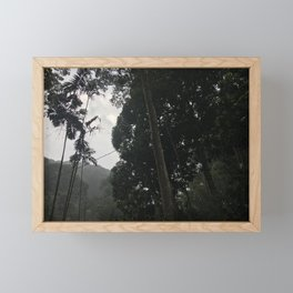 Forest in Malaysia Framed Mini Art Print