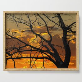 Sunset Tree, California Serving Tray