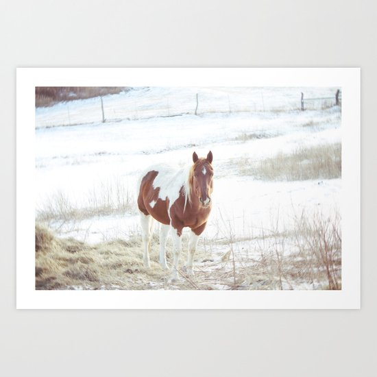 Snow + Horse Art Print