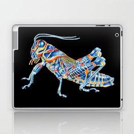 Rainbow Grasshopper Laptop & iPad Skin