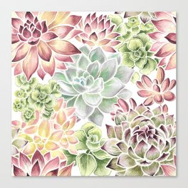 Bright Watercolor Succulents Canvas Print