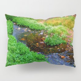 Gentle Stream at the Botanical Gardens Pillow Sham