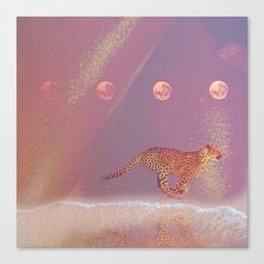beach cheetah Canvas Print