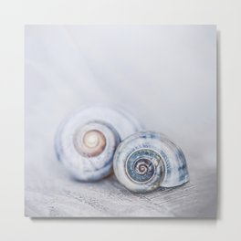 Blue Shells on white washed wood  pastel blues Metal Print
