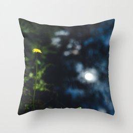 Reflection in the river Throw Pillow