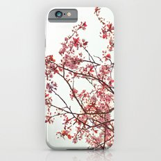 Beautiful day  iPhone 6s Slim Case