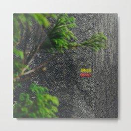 Chemin de randonnée, azores Metal Print