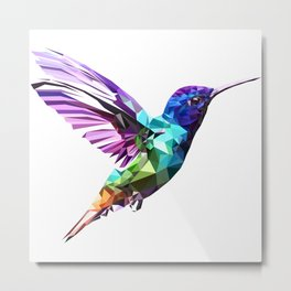 Little humming bird Metal Print