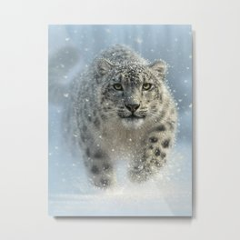 Snow Leopard - Snow Ghost Metal Print