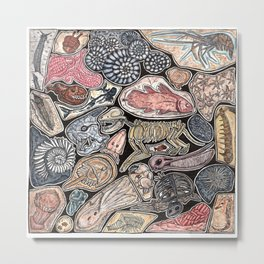Fossils for history, dinosaur and archaeology lovers Metal Print