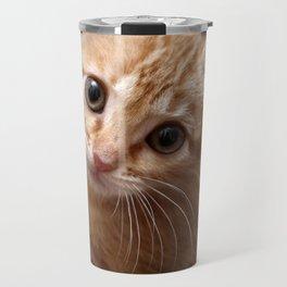 A Cute Kitten Looks Longingly at the Camera Travel Mug