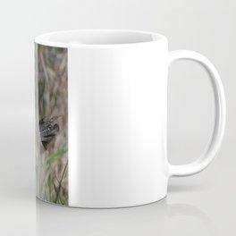 Male Ring Necked Phesant Coffee Mug