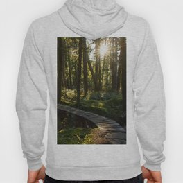North Shore Trails in the Woods Hoody