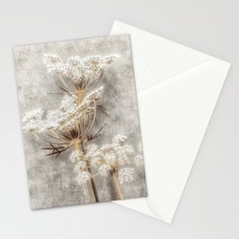 French Country Queen Anne's Lace Stationery Cards