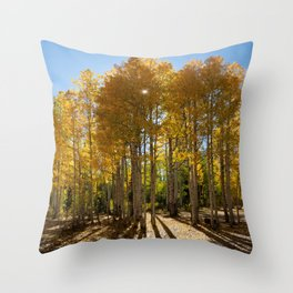 Autumn Blaze outside of Crested Butte, Colorado for #Society6 Throw Pillow