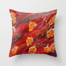 Meteor Surrender  Throw Pillow
