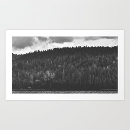 Lake Cushman Art Print