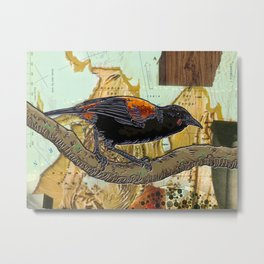 Saddleback Metal Print