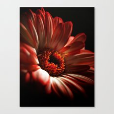 Floral Red Head Canvas Print