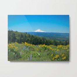 Mount Hood from Tom McCall Preserve Metal Print