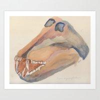 Baboon Skull Art Print