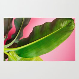 Banana Palm Leaves Pink Background Rug