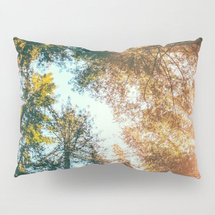 California Redwoods Sun-rays and Sky Pillow Sham