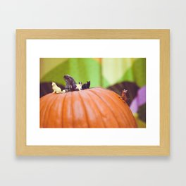 Mount Catkin Framed Art Print