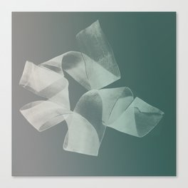 Abstract forms 15 Canvas Print