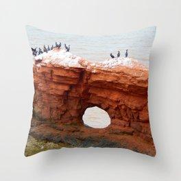Cormorant Island Throw Pillow