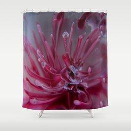 Frozen Sea Urchin Shower Curtain