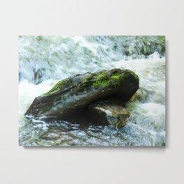 Mossy Water Rocks Metal Print