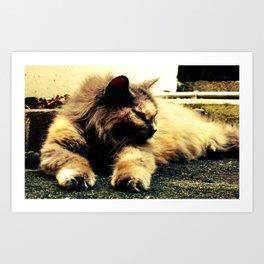 Hemingway Cat Art Print