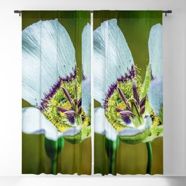 Mariposa Lilly // Macro High Resolution Photograph of the Beautiful White Petals Blackout Curtain