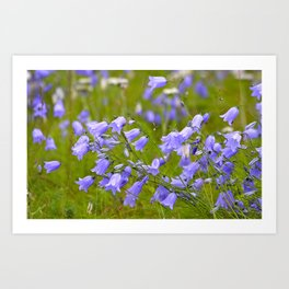 Bluebells Meadow #decor #society6 Art Print