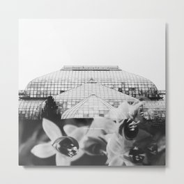 Lincoln Park Double Exposure Metal Print